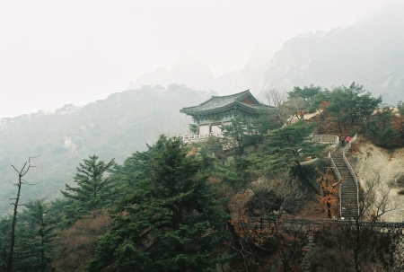 temple-korea2.jpg